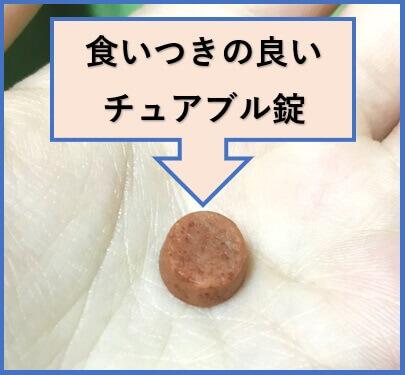 ぽちたま薬局のネクスガード検証2